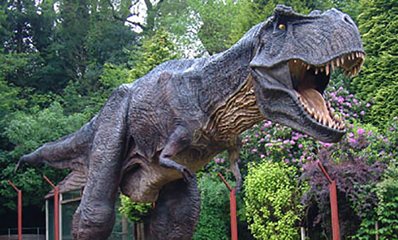 combe Martin wildlife and dinosaur park family attraction near ilfracombe